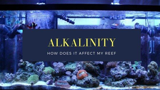 AlkalinityEffectOnReef